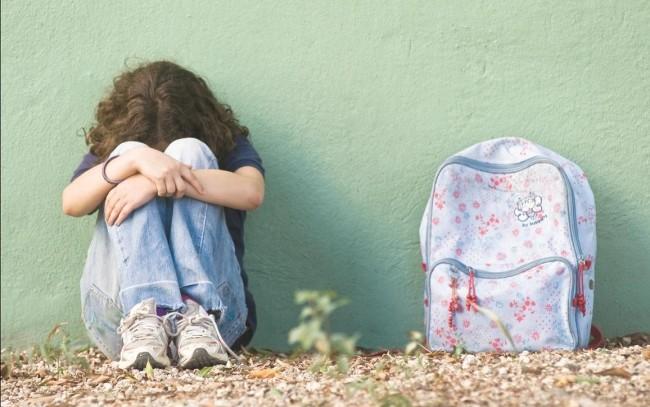 El Gobierno autoriza la tramitación del servicio de atención de acoso en el ámbito educativo